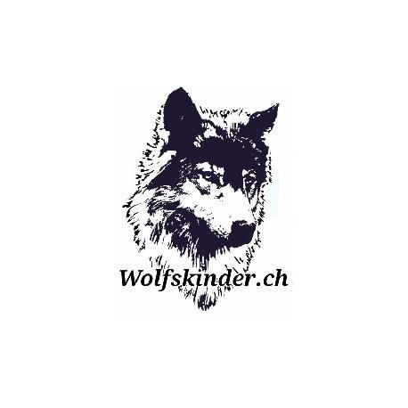 Jagdkontrolle Workshop Nachmittag (30.01.2018)