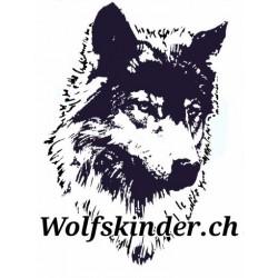 Jagdkontrolle Workshop Nachmittag (06.03.2018)
