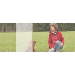 Bewegung - warnehmen - lernen mit Monika Erkens (D)